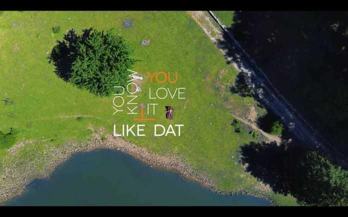Like Dat by Rankin Delgado new lyrics video